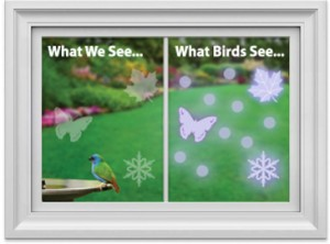 UV stickers can be seen by birds, but not us and may help prevent collisions with the glass