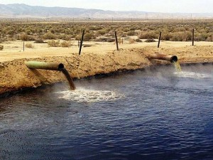 Toxic wastewater from mining or oil industries attract and kill countless birds.