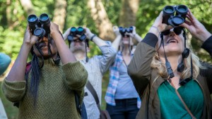 Once you become proficient with binoculars the birding world opens up and  you can find lots of people enjoying the hobby of birdwatching